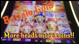 Buffalo gold ! more head(s) more coins !
