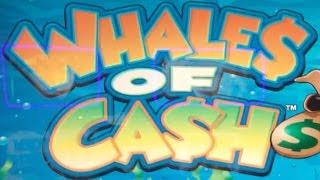 WHALES OF CASH w/ DUCK$ IN A ROW & TWIN WIN • LIVE PLAY • Slot Machine Pokie at San Manuel, SoCal