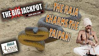 • The Raja Scores A Large Win On Taipan After A Bonus Round With 25 Free Games! •