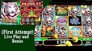 Long Teng Hu Xiao by Aristocrat/Gimmie Games Live Play and Bonus at Barona Casino Lakeside CA