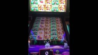 Willy Wonka pure imagination slot machine Oompa Loompa bonus