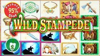 Wild Stampede 95% payback slot machine, bonus
