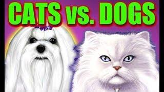 **SUPER BIG WINS CATS VS DOGS** SLOT MACHINE BONUS WINS #BAM!