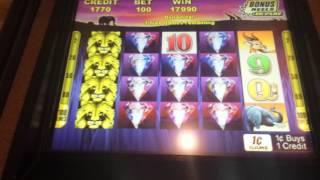 100 Lions - Bonus Round Big Win