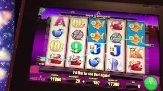 Slot traveling round Europe Part 1 Miss Kitty