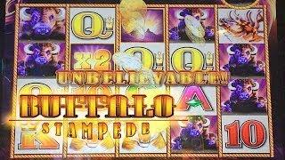 BUFFALO STAMPEDE Slot Machine Bonus BIG WIN AND LINE HIT! Aristocrat Slots