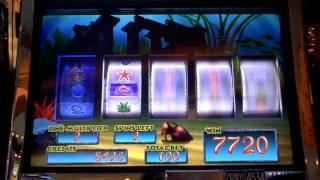 Goldfish Mermaids Wonder slot machine video bonus win at Parx