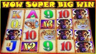 • WOW SUPER BIG WIN • BUFFALO GOLD COIN SHOW • SLOT POKIES