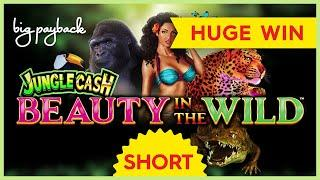 HUGE WIN! Ultra Stack Beauty in the Wild Slot! #Shorts