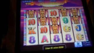 Aristocrat- Tiki talk  slot machine bonus win