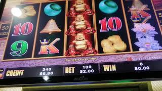 dragon cash how too lose