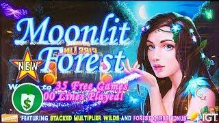 •️ New - Moonlit Forest slot machine