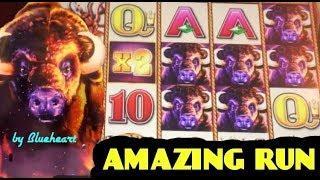 BUFFALO STAMPEDE slot machine BONUS BIG WINS!