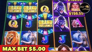 •️$5.00 MAX BET•️TARZAN GRAND BONUS | CRYSTAL CASH | GRAND BAZAAR SLOT MACHINE