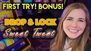 First Time Playing Drop & Lock Sweet Tweet Slot Machine! Got The Free Spins!!