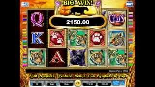 swiss casino online mega fortune