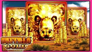 • LIVE PLAY • Buffalo Gold Slot Machine Bonus Wins | Slot Traveler