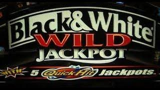 Quick Hits - Black & White Wild Jackpot - Bally Slot Bonus Win