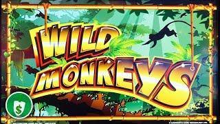 Wild Monkeys WA VLT slot machine