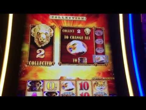 Buffalo Gold == Max Bet Bonus ** SLOT LOVER **
