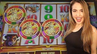 Captain jack's casino