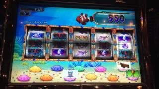 Goldfish II Slot Machine Bonus - Clown Fish