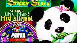 First Attempt on Panda Paradise Flaming Jackpots and Trying The green machine deluxe again!