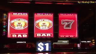 DOUBLE LION•$1 Slot - 9 Lines @San Manuel Casino [赤富士スロット] [カジノ] [Winner] [スロットで遊ぶ] [スロットで勝つ]
