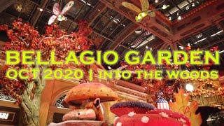 Bellagio Conservatory & Botanical Garden | OCT 2020 Walkthrough