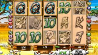 Wild Gambler Slot Machine At 888 Games