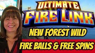 ULTIMATE FIRE LINK BONUSES-NEW FOREST WILD
