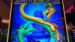 •Does Dragon love me?•50 FRIDAY 43•Fun Real Slot Live Play•Forest Dragons/Double Blessings Slot 栗スロ