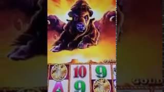 Facebook Live Fun - Episode 3 - Buffalo Gold and Wonder 4 Tower!