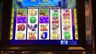 Bloomin Wild slot machine free spins bonus