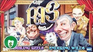 Pets slot machine, bonus