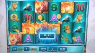 Raging Rhino Unexpected MEGA BIG WIN.Over 400 X Stake-Part 4 of 6