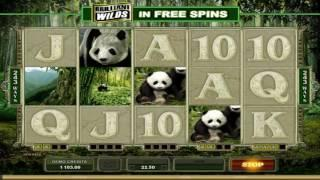 Free Untamed Giant Panda Slot by Microgaming Video Preview | HEX