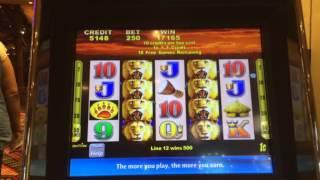 Wild Cats - Bonus w/ Re-Trigger - Big Win! - $2.50 Bet. Relatively new to this game.