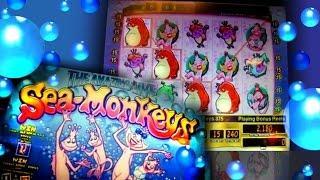 Sea Monkeys Bonus - Free Spins - 1c IGT Video Slots