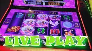 Winning  Heart Throb Episode 245 $$ Casino Adventures $$