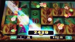 Raging Rhino 2 Cent Slot Machine NICE Line Hit RHINOS!!