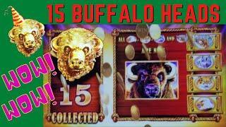 HUGE WIN with15 BUFFALO HEADS on BUFFALO GOLD SLOT MACHINE POKIE - NORWEGIAN JOY CRUISE SHIP
