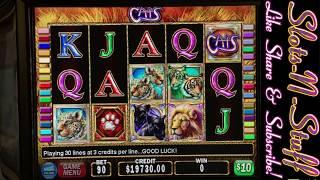 Cats $100k play High Limit Slot Play • Slots N-Stuff