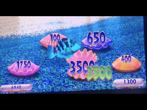 Gold Fish Bonus Blue Fish ** SLOT LOVER **