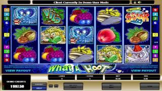 FREE What A Hoot  ™ Slot Machine Game Preview By Slotozilla.com