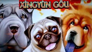 Lock It Link Slot Machine Bonus & BIG WIN | Dragon Link Slot Max Bet Bonus & New Slot Machine Bonus