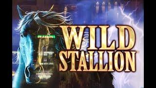 WILD STALLION SLOT MACHINE BIG WIN BONUS and SOMEONE TRIED TO STEAL MY TICKET!