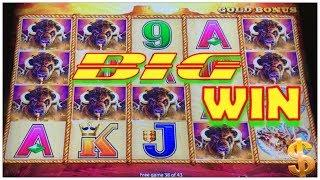 • WOW•️ BIG WIN 43 SPINS • BUFFALO GOLD •️ COIN SHOW •️ SLOT MACHINE POKIES
