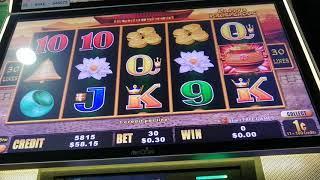 Dragon cash $1 pokie/slot/17