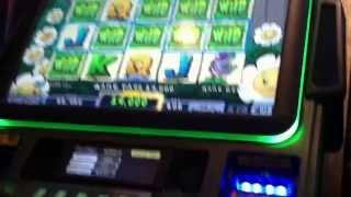Quick Big Line Hit Plants Vs Zombies Slot Machine